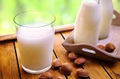 image of milk glass  - Glass of almond milk on a table with almonds and milk bottles - JPG