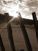 image of slit  - sun is shining through the slit of a fence on the beach - JPG