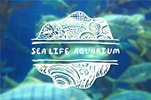 foto of sea life  - Detailed hand drawn zentangle element on blurred background - JPG