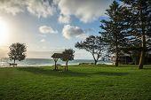 pic of grass area  - A view of City beach picnic grass area in Perth Western Australia - JPG