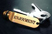 pic of rapture  - Keys and Golden Keyring with the Word Enjoyment over Black Wooden Table with Blur Effect - JPG