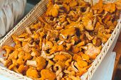 stock photo of chanterelle mushroom  - Fresh chanterelle mushrooms stacked in a wicker tray - JPG