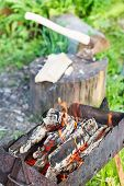 pic of brazier  - firewood burning in old brazier with ax in stump on background - JPG