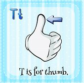 image of letter t  - Flashcard letter T is for thumb - JPG