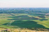 picture of butt  - Farmland at dusk Steptoe Butte State Park Oakesdale Washington - JPG