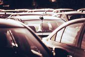 foto of parking lot  - New Cars For Sale on the Dealership Parking Lot - JPG