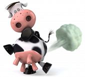 image of farting  - Cow pollutes the planet - JPG