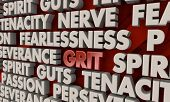 Grit Passion Persistence Spirit Guts Tenacity Words 3d Render Illustration poster