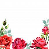 Red Hybrid Rose. Floral Botanical Flower.frame Border Ornament Square. Aquarelle Wildflower For Back poster