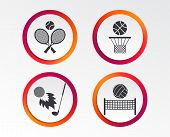 Tennis Rackets With Ball. Basketball Basket. Volleyball Net With Ball. Golf Fireball Sign. Sport Ico poster