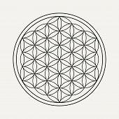 Flower Of Life Mandala In Outline Style. Zen Illustration, Yoga Background. Eps10 Vector. poster