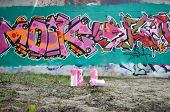 A Few Used Paint Cans Lie On The Ground Near The Wall With A Beautiful Graffiti Painting In Pink And poster