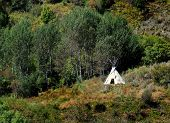 pic of tipi  - American Indian TeePee on mountainside with trees and brush around - JPG