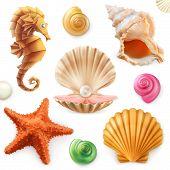 Shell, Snail, Mollusk, Starfish, Sea Horse. 3d Icon Set poster