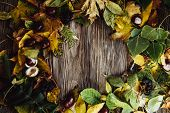 Autumn Wooden Background With Maple Leaves With Copy Space poster