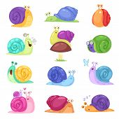 Snail Vector Snail-shaped Character With Shell And Cartoon Snailfish Or Snail-like Mollusk Kids Illu poster