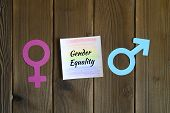 Female And Male Symbols Cut Out Of Paper And Sticky Note With Painted A Pencil The Rainbow Color And poster