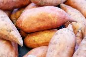Fresh Raw Organic Sweet Potato Vegetables As A Background. Sweet Potato For Sale At Farmers Market.  poster