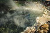 Geothermal Pool At Kuirau Park In Rotorua, North Island, New Zealand poster