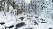 Small river in the winter forest covered snow. Russia, Siberia, Altai region poster
