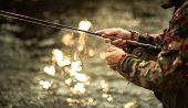 Close-up view of the hands of a fly fisherman working the line and the fishing rod while fly fishing poster
