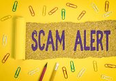 Conceptual Hand Writing Showing Scam Alert. Business Photo Text Warning Someone About Scheme Or Frau poster