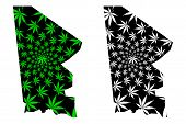 Tombouctou Region (regions Of Mali, Republic Of Mali) Map Is Designed Cannabis Leaf Green And Black, poster