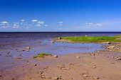 Picturesque Coast Of The Gulf Of Finland, St. Petersburg, Russia. Beautiful Beach And Sea Background poster