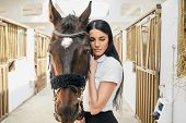 Attractive Woman With Long Dark Hair In White Shirt Embracing Strong Purebred Stallion At Stable, St poster
