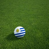 3d rendering of a Uruguayan soccerball lying on grass