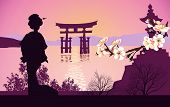 stock photo of geisha  - Geisha mountains in the background and the Japanese gate - JPG