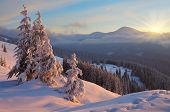 Colorful sunrise in the mountains in winter. Beautiful landscape in the morning. Carpathians, Ukrain