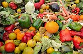 stock photo of rotten  - Rotten fruit and vegetable waste in a dumpster - JPG