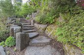 stock photo of fern  - Garden Stone Stair Steps Hardscape with Natural Rocks with Plants Trees Ferns Landscaping - JPG