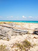 stock photo of playa del carmen  - Carribean sea scenery in Playacar  - JPG