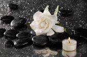image of gardenia  - gardenia and candle on pebbles  - JPG