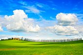 stock photo of plowed field  - Tuscany farmland cypress trees row and plowed field country landscape - JPG
