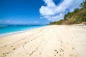 stock photo of deserted island  - Picture of Deserted beach - JPG