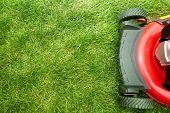 pic of lawn grass  - Red Lawn mower cutting grass - JPG