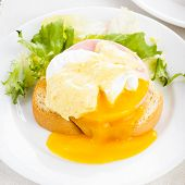 foto of benediction  - Eggs benedict close up on white plate serving table