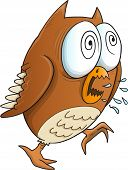 pic of insane  - Insane Crazy Owl Vector Illustration Art - JPG