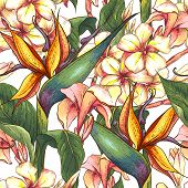 image of bird paradise  - Tropical seamless pattern with exotic flowers - JPG