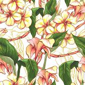 foto of jungle flowers  - Tropical seamless pattern with exotic flowers - JPG