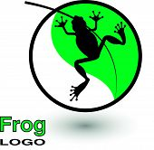 picture of tadpole  - Round logo with a frog on a bright green leaf - JPG