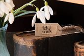 stock photo of get well soon  - snowdrop and card with lettering get well soon - JPG
