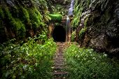 foto of tunnel  - Hidden tunnel near Sydney, New South Wales, Australia ** Note: Soft Focus at 100%, best at smaller sizes - JPG