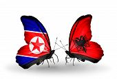 pic of albania  - Two butterflies with flags on wings as symbol of relations North Korea and Albania - JPG