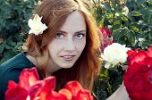 foto of auburn  - Young caucasian woman with auburn hair sitting in the rose garden in the sunset light - JPG
