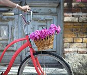 picture of wooden basket  - Vintage bicycle with basket with peony flowers near the old wooden door - JPG