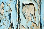 image of nail paint  - stripped paint in the blue wood door and rusty nail - JPG